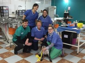 vet course Spain